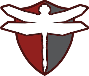 Dragonfly Security Logo